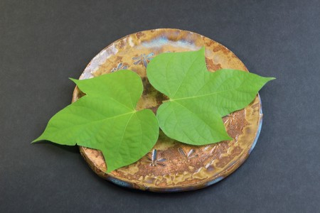 underlay: Leaf of morning glory on the dish Stock Photo