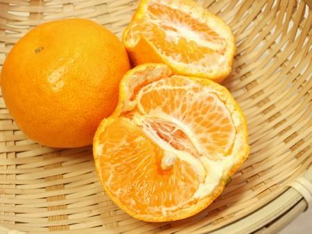 Mandarin oranges, harumi