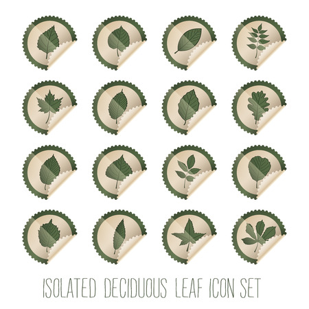 deciduous: isolated deciduous tree leaf icon set in stamp shape, with choosable colors and shapes