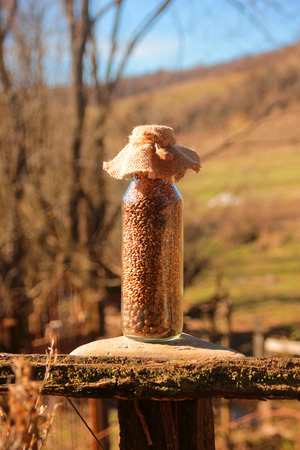 bottle full of different types of grains and seeds in the middle of nature