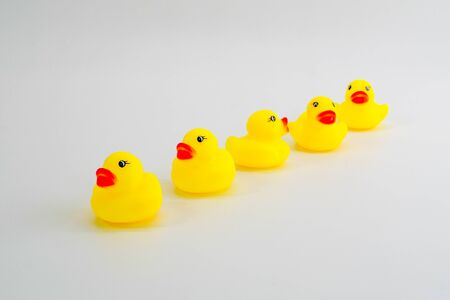 Five mini rubber ducks in a row. Two facing each other talking. Getting your ducks in a row. Teamwork