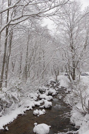 Piccolo ruscello attraversa la foresta invernale. Le rocce sul ruscello sono coperte di neve. Freddo freddo ma calmo e fresco. Archivio Fotografico - 87224388