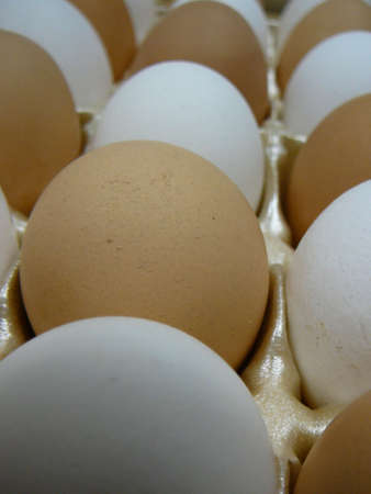 protien: Brown and White Eggs in carton