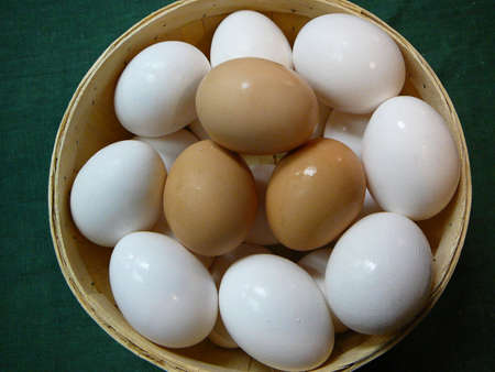 protien: Brown and White Eggs