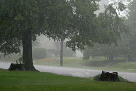 torrential: Pouring Rain Stock Photo
