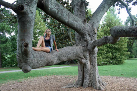 huge tree: Teen sitting in gnarled Southern Magnolia tree