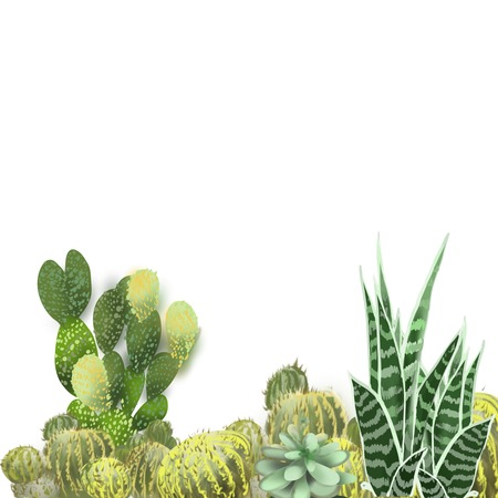 Cactus grouping hand drawn original painted artwork border background on white backdrop for realistic unique design use In horizontal lower section Stock Photo