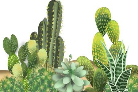 Cactus Garden hand drawn painting isolated group border