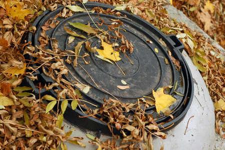 Rusty manhole under the autumn leaves