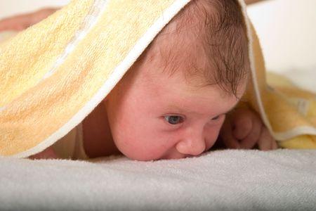 Newborn baby under towel spying on surrounding world photo