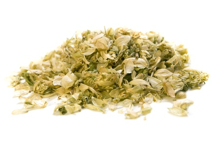 bitterness: dry hop isolated on white backgraund