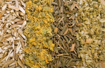 Dry herbals, different medicinal herbs -  dry hop, willow bark, calendula, viburnum bark photo