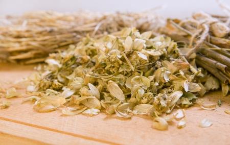 salix alba: Dry herbals, different medicinal herbs -  dry hop, willow bark, viburnum bark