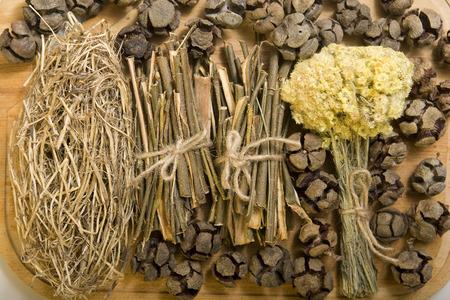 salix alba: Dry herbals, different medicinal herbs -  willow bark, viburnum bark