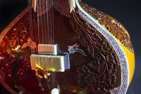 shankar: Sitar, a String Traditional Indian Musical Instrument, close-up, blue lens effect. dark background, soft focus. Evening of ethnic oriental music. Indian Raga