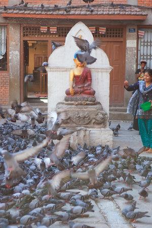 darbar: KATHMANDU, NEPAL may 2014: pigeons on City Square in Kathmandu, Nepal on may 2014. The city is surrounded by four major mountains: Shivapuri, Phulchoki, Nagarjun, and Chandragiri