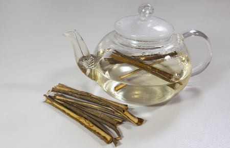 White Willow Bark Medical tea. Tea from Willow Bark close-up. Alternative Medicine - Dry medical herbs. Pot with decoction