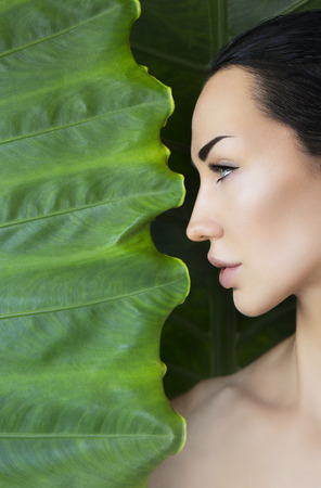 Head and bare shoulders portrait of beautiful young woman looking trough green tropical leaves. Young woman's face surrounded by tropical leaves. Cosmetic, wellness and skincare. Space for text
