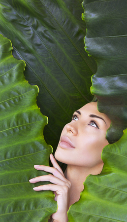Young woman's face surrounded by tropical leaves. Woman face with Natural nude make-up on a tropical leaf background. Natural cosmetic and wellness concept. Purity and skincare. Girl and Space for text