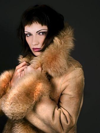 Fur Coat Stock Photo - 713124