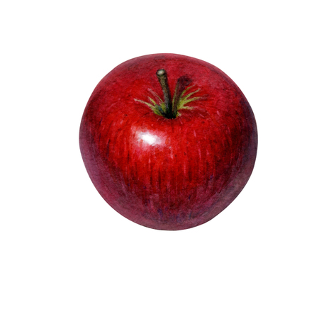 hand painted watercolor delicious red apple isolated on white background