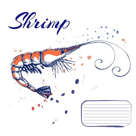 ink hand drawn shrimp or prawn concept for design or decoration. Ink spattered shrimp illustration. vector red king prawn drawn in ink. seafood concept with color splashes on white with place for text