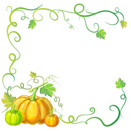 autumn frame with pumpkins and vines, leaves and place for text. Thanksgiving, halloween or corn festival card template, border or banner with pumpkins, leaves, curly tendrils. pumpkins concept