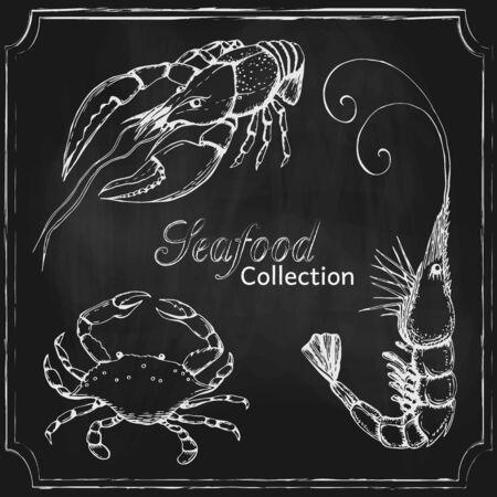 chalkboard seafood menu background. hand drawn blackboard seafood collection. background template with different sea animals on chalkboard design for shop, restaurant, menu, poster, banner