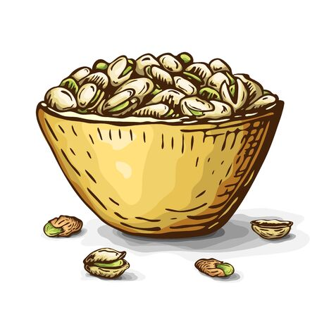 hand drawn illustration of pistachio nuts in bowl isolated on white. vector engraved nuts drawing in vintage style. open pistachios, nutshell and pile of nuts on plate. healthy snack, beer appetizer.