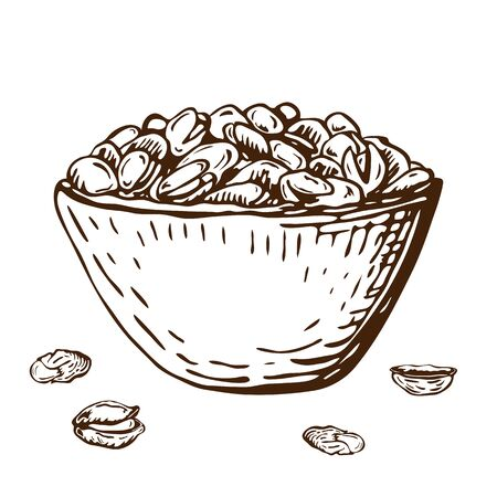 hand drawn illustration of pistachio nuts in bowl isolated on white. vector ink engraved nuts drawing in vintage style. open pistachios, nutshell and pile of nuts on plate.healthy snack beer appetizer