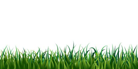 Seamless grass border isolated on white or transparent background. vector illustration of fresh realistic green lawn. endless horizontal grass frame. bright meadow panorama. spring, summertime design