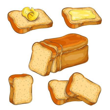 set of wheat sliced bread and toasts illustration isolated on white. white square loaf with various bread slices icon collection. fresh baked bread. Vector colored vintage engraved sketch. for design