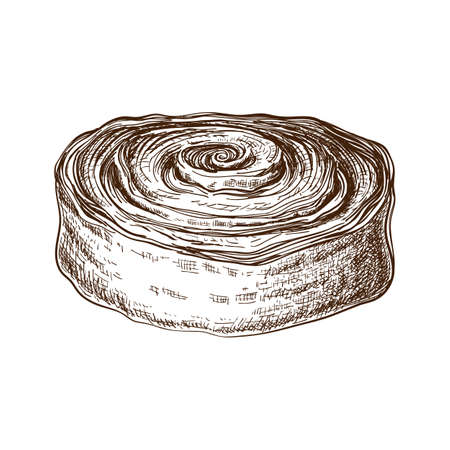 hand drawn sweet bun or roll with cinnamon or filled with poppy seeds. pastry sketch. Vector illustration of danish or swedish dessert. poppy bun for breakfast. cinnamon or cocoa snail, tasty swirls