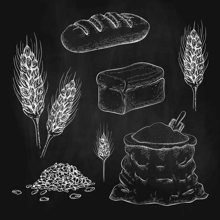 chalk drawn breads, flour bag and wheatears on black chalkboard. vector sketch illustration of square whole grain bread, wheat long loaf, rye spikelets, grains and burlap sack of flour. bakery goods.