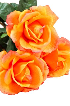 Close-up of orange artificial roses, isolated on white Stock Photo