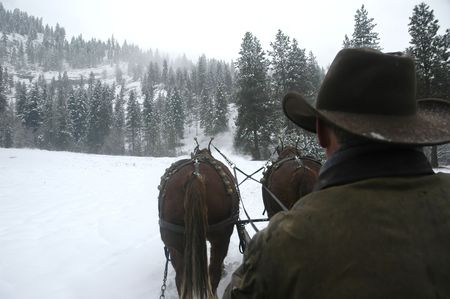 Back of horse coachman riding in the snow photo