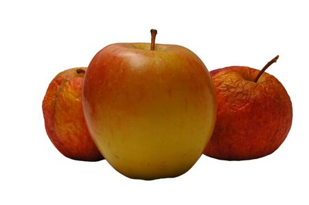 Fresh apple in front of two old wrinkled ones