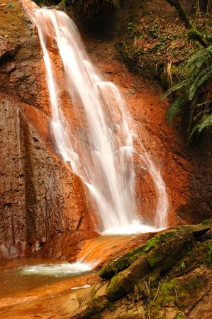Small  waterfall over red rocks and green fern