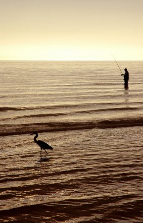 fisher animal: Man and heron fishing in the ocean at sunset