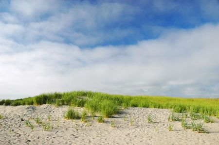 Sand dunes at Long Beach Peninsula on a bright sunny day