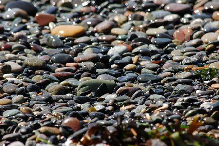 Sparkling multicolored beach pebbles