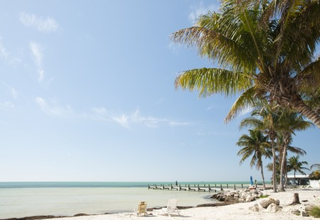 Florida keys beach landscape with sunbathing chairs, wooden pier and palm trees