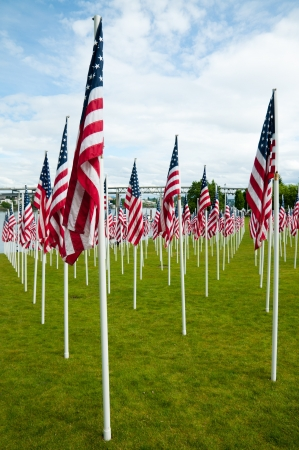 Rows of American flags on Memorial Day