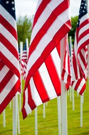 Field of American flags at veteran's memorial Stock Photo - 8199358