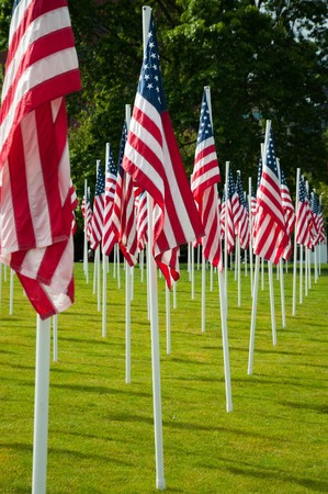 Rows of American flags at the park on Memorial Day photo