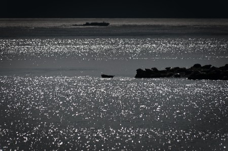 islet: Darkened seascape with seals beached on an islet