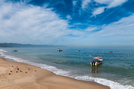 Boats and seabirds at the beach in Banderas bay