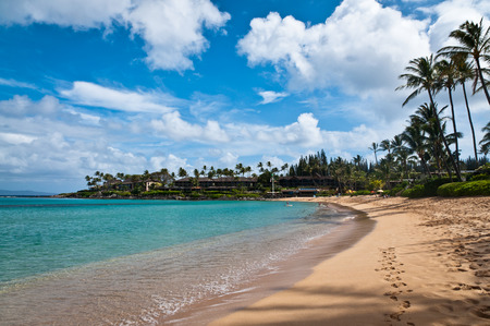 turqoise: Golden sand and turqoise water of Napili beach in Maui