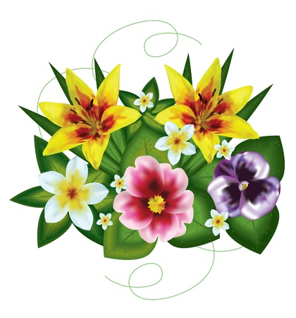 primrose:  bouquet of beautiful flowers painted on a white background with a mesh Illustration