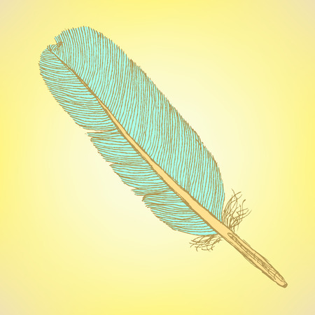 feather vector: Sketch feather, vector vintage background